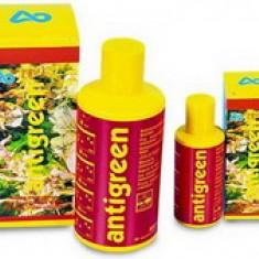Средство против зеленых водорослей Antigreen 100мл