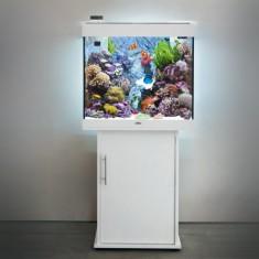 Морской aквариум JUWEL Лидо 120 белый с тумбой